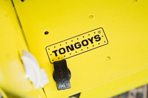 Tongoysdelar